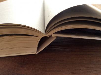 GP_book_2012_17.jpg